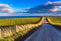 Caitlins Scenic Road