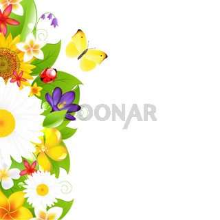 Summer Flowers And Leaf Border