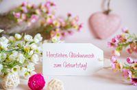 Rose Spring Flowers, Label, Glueckwunsch Zum Geburtstag Means Happy Birthday