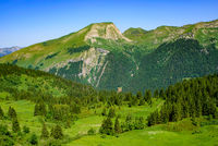 Landscape of mountains of Alps in summer with trees in Portes du Soleil,  France, Europe