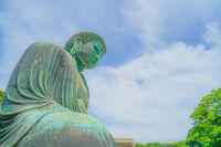 Early summer of the Great Buddha of Kamakura, which was wrapped in fresh green