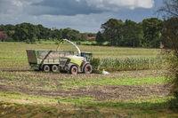 Corn harvest vehicles distant view phase 5