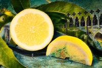 Angeschnittene Zitrone Italian Vintage Style