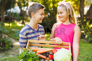 Happy caucasian brother and sister in garden holding box of fresh organic vegetables
