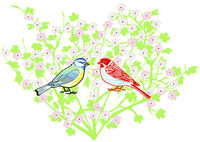 two songbirds on a tree