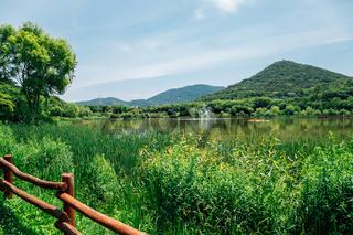 Summer lake at Incheon Grand Park in Korea