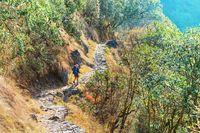 Hike in Nepal jungle