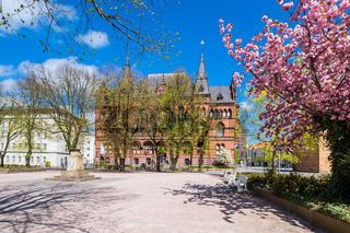 Das Ständehaus in der Hansestadt Rostock im Frühling