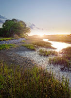 View of the marsh waterways in the Low Country near Charleston SC at sunset