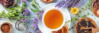 Tea panorama with herbs, flowers and fruit, an overhead flat lay shot