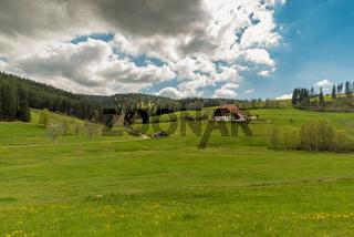 Traditioneller Bauernhof im Schwarzwald, Jostal bei Breitnau, Baden-Württemberg, Deutschland