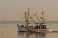 Fishing trawler fishing with a trawl on the North Sea