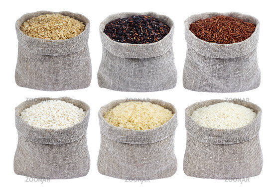 Different types of rice in bags isolated on white background. Collection