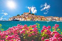 Rovinj. Beautiful historic town of Rovinj coloful summer view