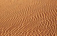 Dunes landscape, Maspalomas, Gran Canaria, Canary