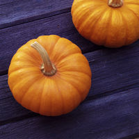 Two Pumpkins on blue