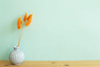 Vase of orange hares tail grass dry flowers on wooden table. mint wall background. copy space