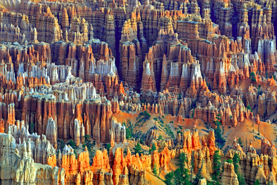 Felsformationen und Hoodoos, Bryce Canyon bei Sonnenaufgang, Bry
