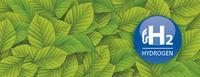 H2 Hydrogen Green Beech Leaves Header
