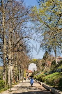 woltersdorf, deutschland - 10.04.2020 - uferweg am flakensee