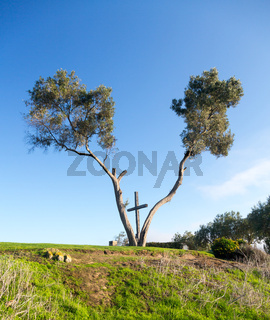 Serra Cross in Ventura California between trees