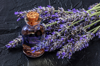 Lavender infused oil with lavandula flowers on a black background