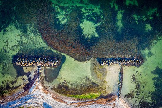 Breakwater at Kikhavn Beach, Denmark