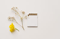 White memory card on white background with filed flowers. Eco friendly sustainable technology concept. Chia coin mining on ssd memory. Future of technology, minimal white style