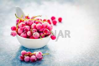 Frozen red currant in bowl on kitchen table.