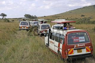 jede Menge Touristenbusse beobachten Tiere in der Masai Mara, Ke