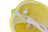 Sliced fresh lemon isolated on white macro capture suitable as backgorund or wallpaper.