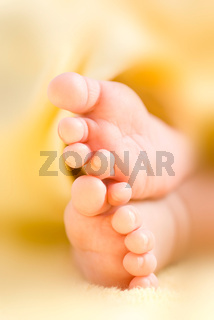 Infant toes in a row