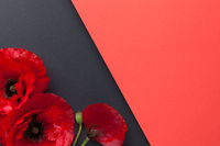 Poppy Flowers On Paper Background Flat Lay