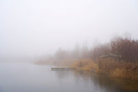 calm scene at a lonely lake near Magdeburg in Germany in fog
