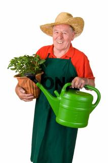 Seniorgärtner mit Blumentopf