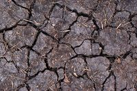 Dry black soil with cracks. Denotes water scarcity or drought