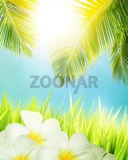 Tropical concept. Vertical composition.