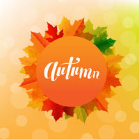 Autumn Postard With Bright Leaves And Text
