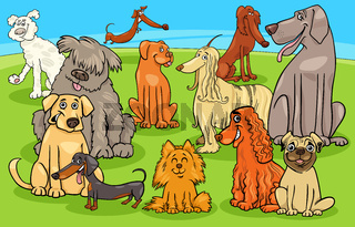 cartoon purebred dogs and puppies characters group