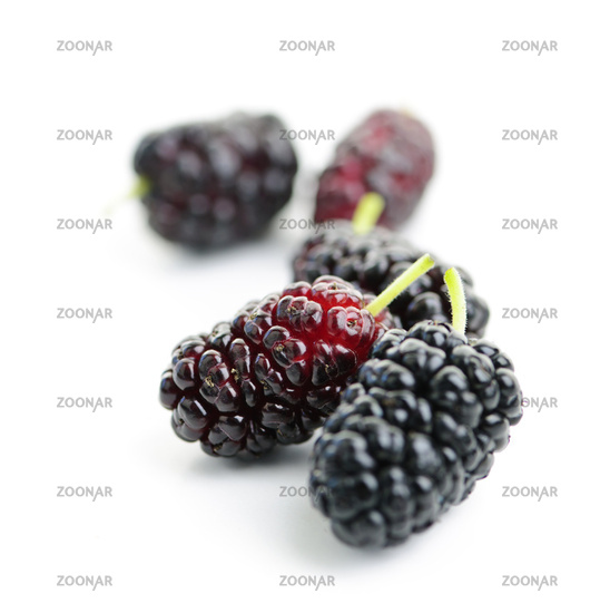 Mulberries close up