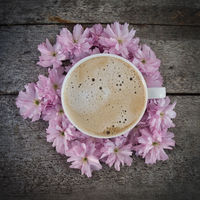 coffee on flowers