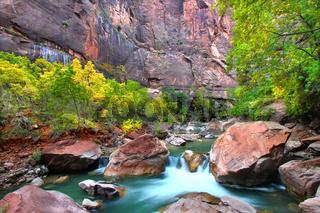 Virign River Zion National Park