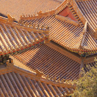 Golden Chinese Roofs