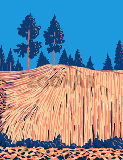 Devils Postpile National Monument with an Unusual Rock Formation of Columnar Basalt near Mammoth Mountain in California WPA Poster Art