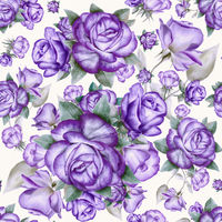 Seamless pattern with purple roses and gray leaves on white.