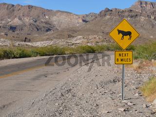 Vosicht - Esel kreuzen die Fahrbahn