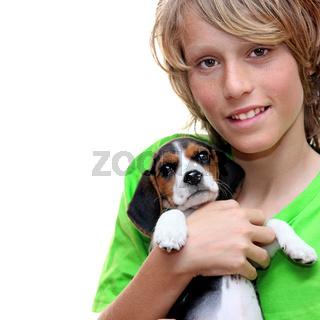 child holding, pet beagle puppy dog
