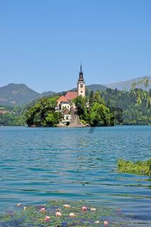 Seeinsel mit Marienkirche im Bleder See
