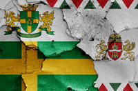 flags of District VIII. (Jozsefvaros) and Budapest painted on cracked wall