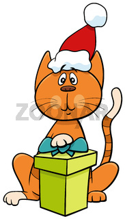 cartoon cat with gift on Christmas time